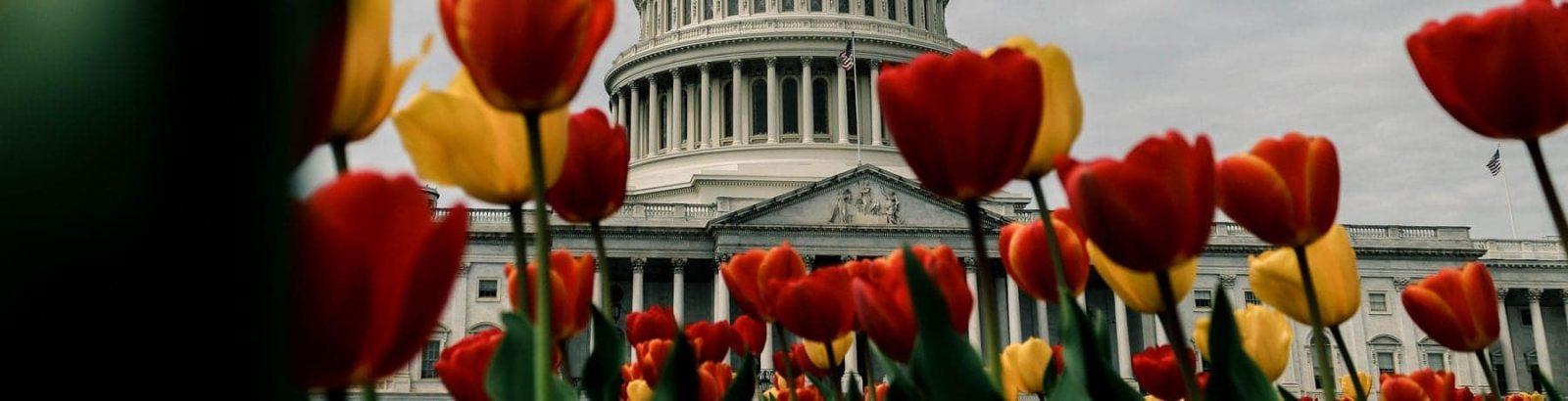 THL Advocates on Behalf of American Citizens in Legislative Lobby Days