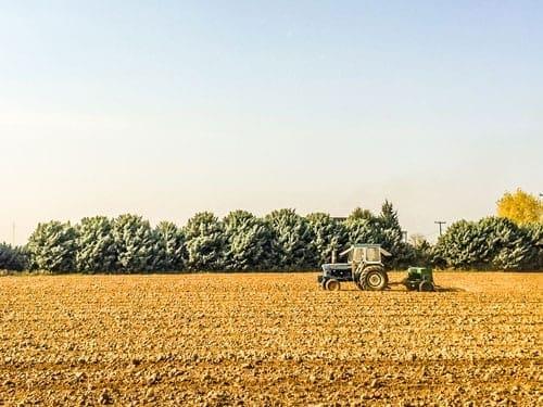 Monsanto lawsuit dicamba