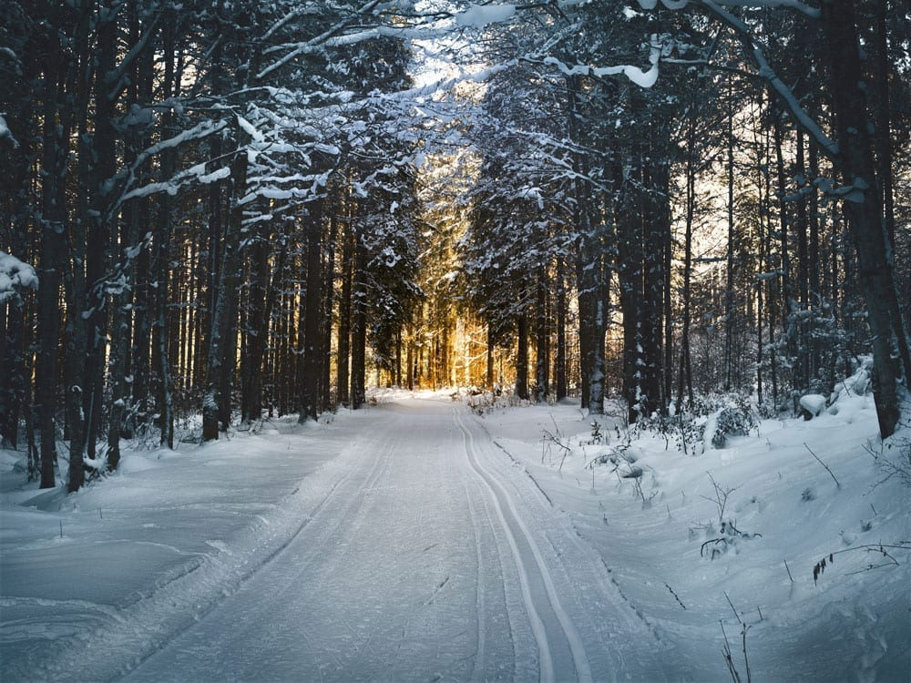 TorHoerman Law's 2020 Guide To Winter Weather Safety