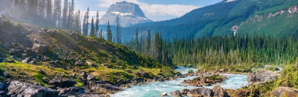 10 National Park Safety Tips to Keep Yourself Safe